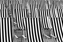 deckchair photography / photography projected centred around deck chairs