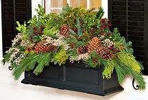 Window Box Crush / Window boxes are charming and inviting.  I will enjoy sharing these gorgeous pictures.
