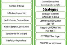 présentation fonctionnement/stratégies