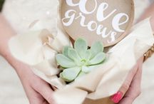 Favours for wedding guests