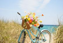 All kinds of Bike's ..... / by Jackie Pestell