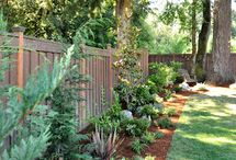FRONT YARDS/LANSCAPE