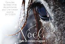Communication Sellerie Mon Cheval / Nos visuels de communication