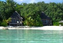 OUR DIVING CENTER ISLAND: GANGEHI