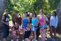 Hearts For Animals Inc / Our latest visitors - The Hawaii Herbalife Family!