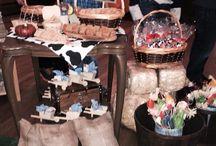 Fazendinha Kayo / Festa tema fazenda