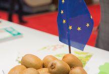 Premium European Kiwi campaign / Follow us in our journey around the world!