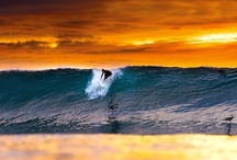 surf / by Good Fellas