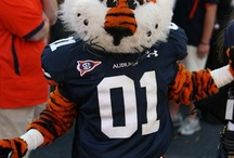 Auburn Football / by A-O Tourism