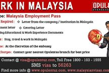 Malaysia Visas / Malaysia is among the well developed economies of the world.  There are plenty job and business opportunities in Malaysia.  Study in Malaysia is not just an educational experience but there is lot more to gain from the country. The standard of education is certainly very favorable for overseas students aspiring to study in the country.