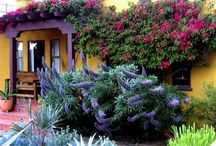 Spanish style / Spanish style architecture and home design.