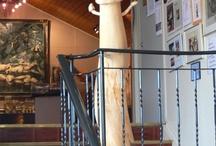 The Phallus Museum