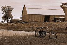 Old beautiful barns