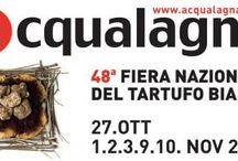 Gli Eventi del Territorio / #eventi, #feste, #sagre e #manifestazioni.... vicino a noi!