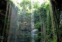 Yucatan Experiences