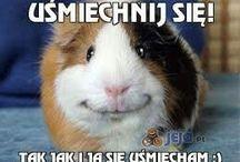 Uśmiechnij się.... :)