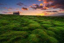 Ireland / Irish Landscape