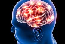 Brain improvement