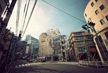 T o k y o / / S h i b u y a / 渋谷区 / Harajuku / 原宿 /