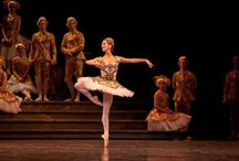 The Sleeping Beauty / The Sleeping Beauty is onstage June 10 - 20, 2015 at the Four Seasons Centre for the Performing Arts.  / by The National Ballet of Canada