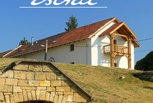 Mád - Hungary / We have our center at Mád, in a wonderful hungarian village. Mád is in the heart of the world famous Tokaj.