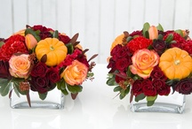 fall flowers and decor  / by Sophisticated Floral Designs