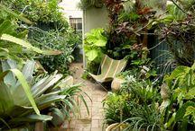 Subtropical courtyard gardens