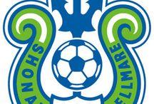 J LEAGUE club emblem