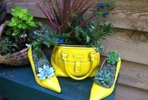 shoe planters