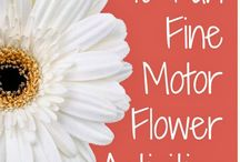Therapy: Fine Motor Skills