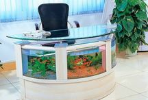 ** OriGiNaL AqUaRiuM ** / idee stravaganti acquari