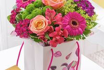 Summer Flowers 2016 / Selection of Summer Flowers sure to captivate and impress.