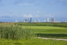 Golf Courses / The Greater Atlantic City Region is host to some of the finest public & private Golfing in the Northeast corridor.