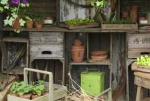 Gardens / Balconies