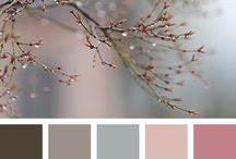 color moodboard