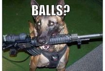 MAN'S BEST FRIENDS / Animals who protect, serve and work for homo sapiens / by Yong Allen