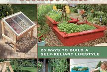 Self sufficiency & Eco living