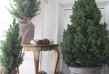 Holiday   Christmas / Christmas decorating, meal ideas,gift wrapping