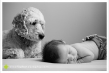 babies & animals  / by Amy Method