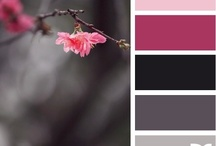 paleta kolorow