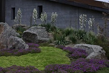 OUTDOOR California landscape / Plants for a water thirsty environment  / by Kathy McConnell