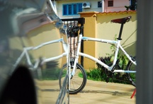 Road / by Dahon Bikes