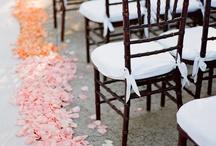 Weddings / by Christina