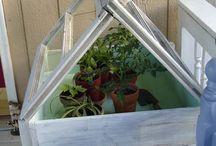 gardening / by Floppin Flower