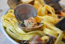 Palourde / Clam - clams - palourde - palourdes