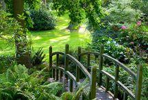 Gardens / Particolari di giardini british