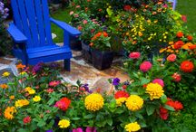 Kvety s modrou stiličkou