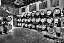 North County Wineries / by Carol Farrar