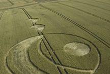 2.004 Crop Circles