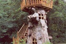 Stromové príbytky